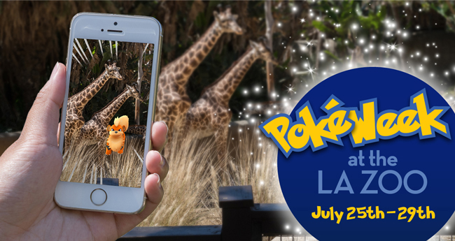 LA Zoo Draws in Visitors with PokéWeek
