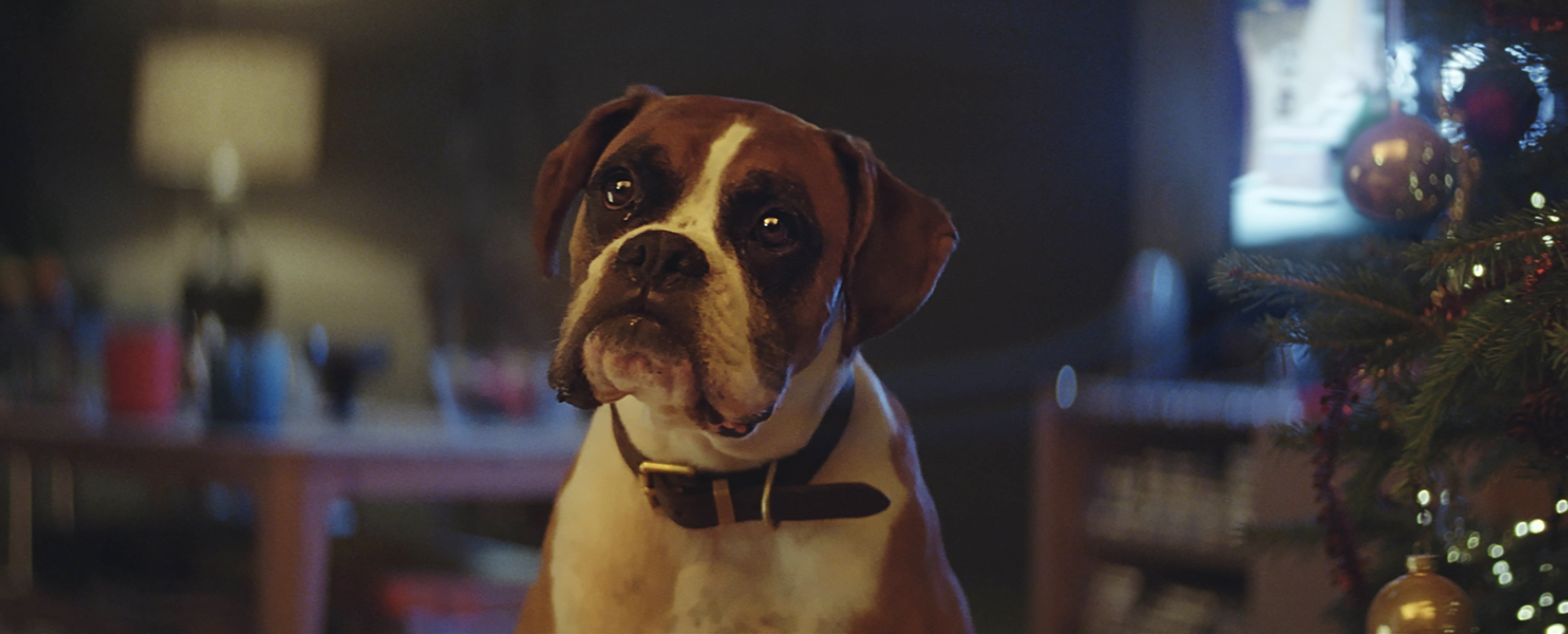 John Lewis Boosts 'Buster' Christmas Campaign with Snapchat Filter