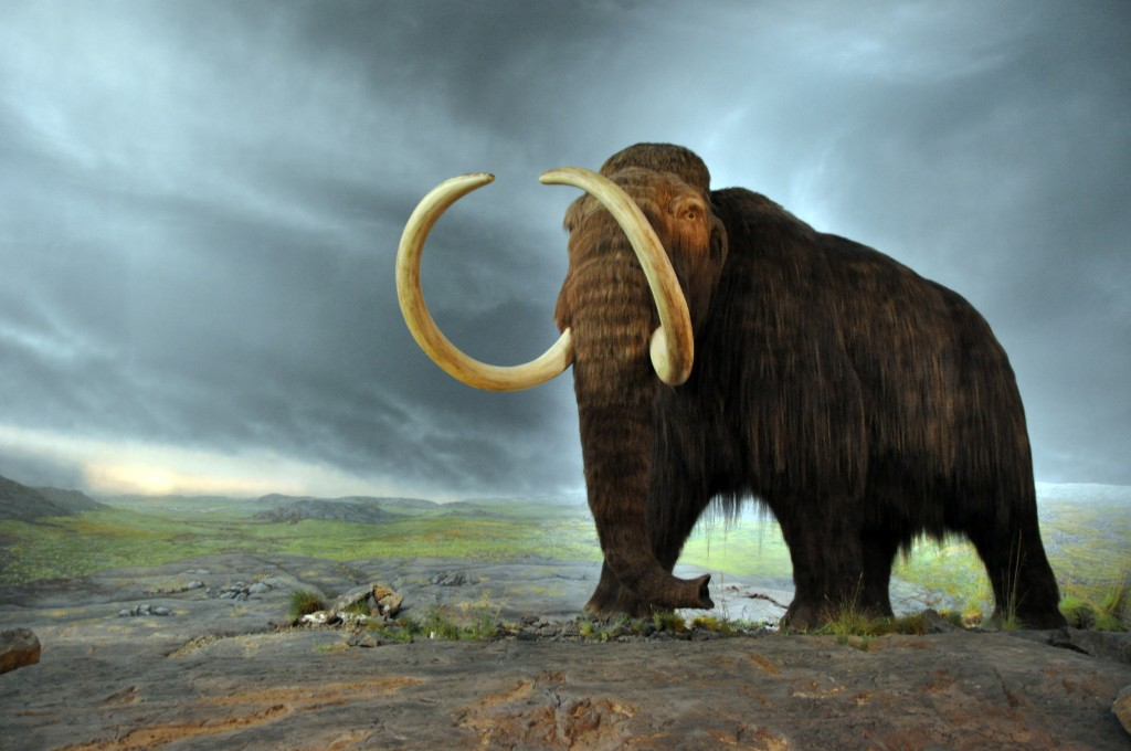 Innovation Lab: Cloned Mammoths, Therapy Bots and Smog Ink