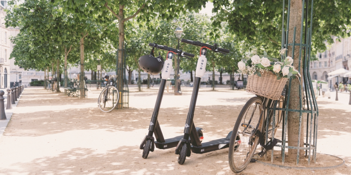 Bird scooters Paris