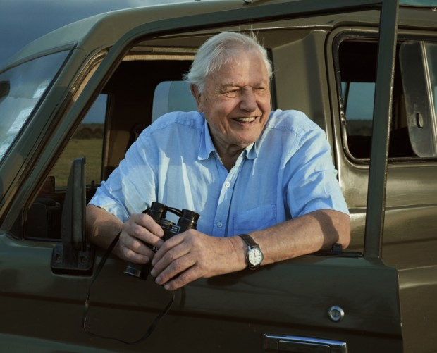 BBC takes over Spotify to promote Sir David Attenborough's latest series